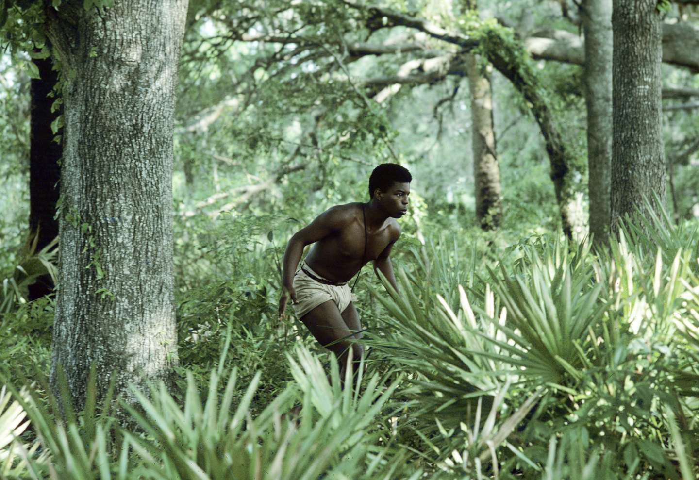 "UNITED STATES - JANUARY 24: ROOTS - Sunday, Jan. 23-Sunday. Jan. 30, 1977, The 12-hour ABC Novel for Television ""Roots"", which aired for eight consecutive nights, remains one of TV's landmark programs. Based on Alex Haley's best-selling novel, ""Roots"" followed 100 tumultuous years and several generations of the author's African ancestors, from the arrival of Kunta Kinte (LeVar Burton, pictured), the West African youth kidnapped into slavery and shipped to America, through emancipation after the Civil War."
