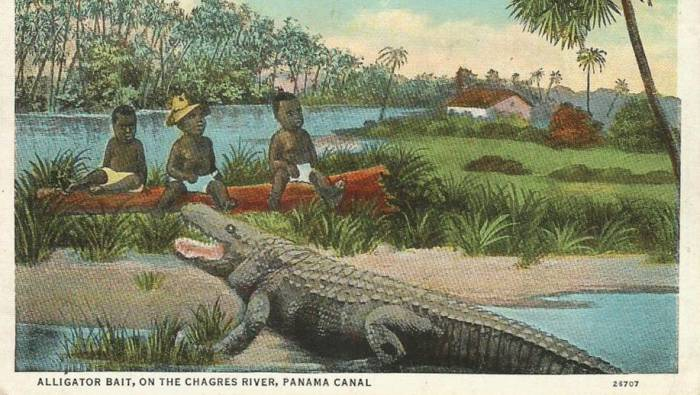 The gut wrenching history of black babies and alligators freerunsca Image collections