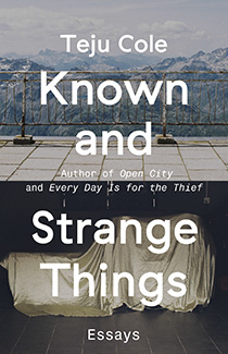Known and Strange Things book cover