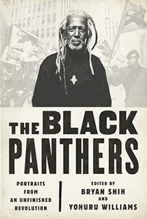 The Black Panthers book cover