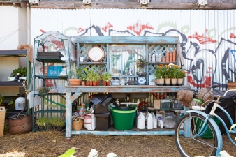 Shelf unit with potted plants and gardening accessories in community garden