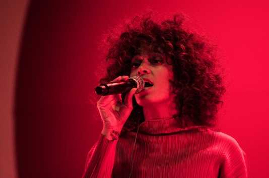 Solange Knowles performs at Broccoli City Festival.