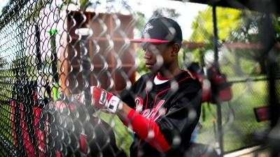 MLB Academy